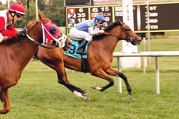 INTERRUPTED, a Half-Sister to ALTERNATION, Rallies to Win Lady Baltimore S.
