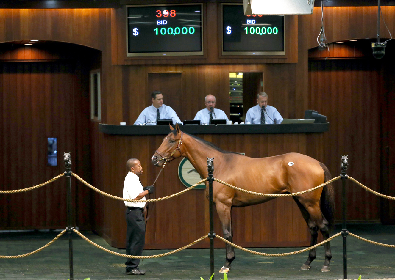 First-Crop 2YO by ALTERNATION Sells for $100,000 at OBS June