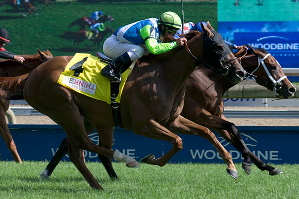 RAINHA DA BATERIA Wins Woodbine's G2 Dance Smartly