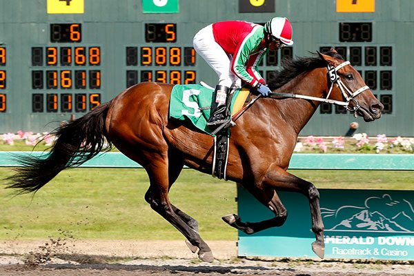 First Crop 2YO DIAMONDS R Romps by 11 1/2-Lengths in MSW
