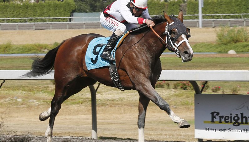 First Crop 2YO MY HEART AWAKENS Rallies for Maiden Special Debut Win