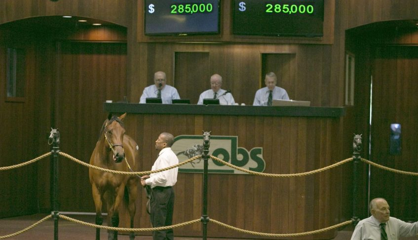 BROKEN VOW Filly Fetches $285,000 at OBS April