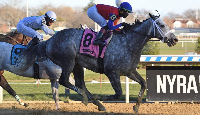 LIFE IN SHAMBLES Prevails in G3 Fall Highweight
