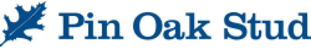 PNOK-Homepage-Logo