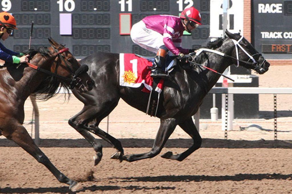 Adhara Wins El Paso S.