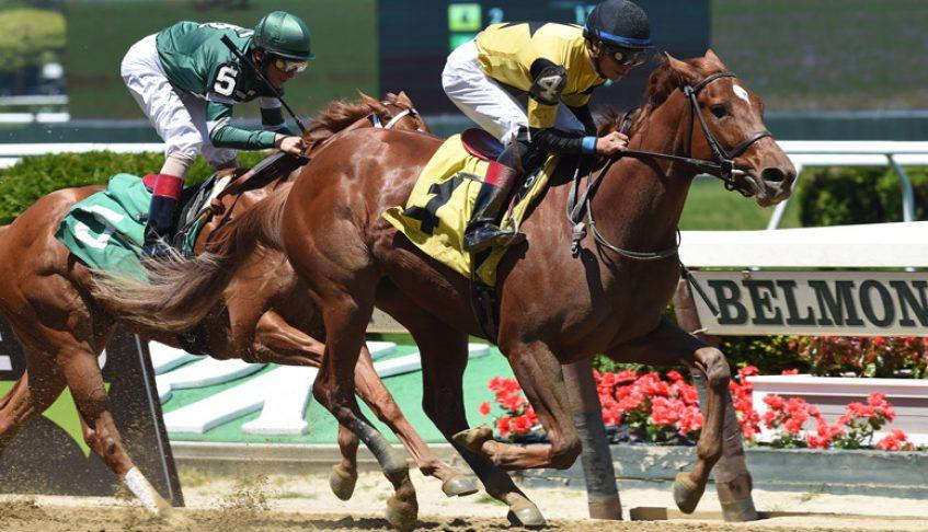 2YO BEST PERFORMANCE Wins Belmont Maiden Special Debut