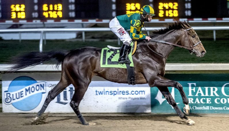 New Stakes Horse, Plus Maiden Special and Repeat Winners for ALTERNATION