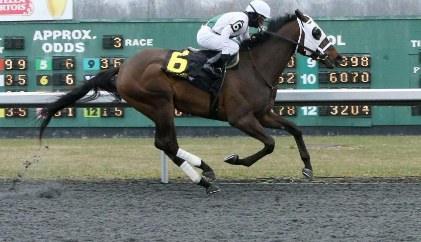 GET TOUGH Gives ALTERNATION His 19th First Crop Winner