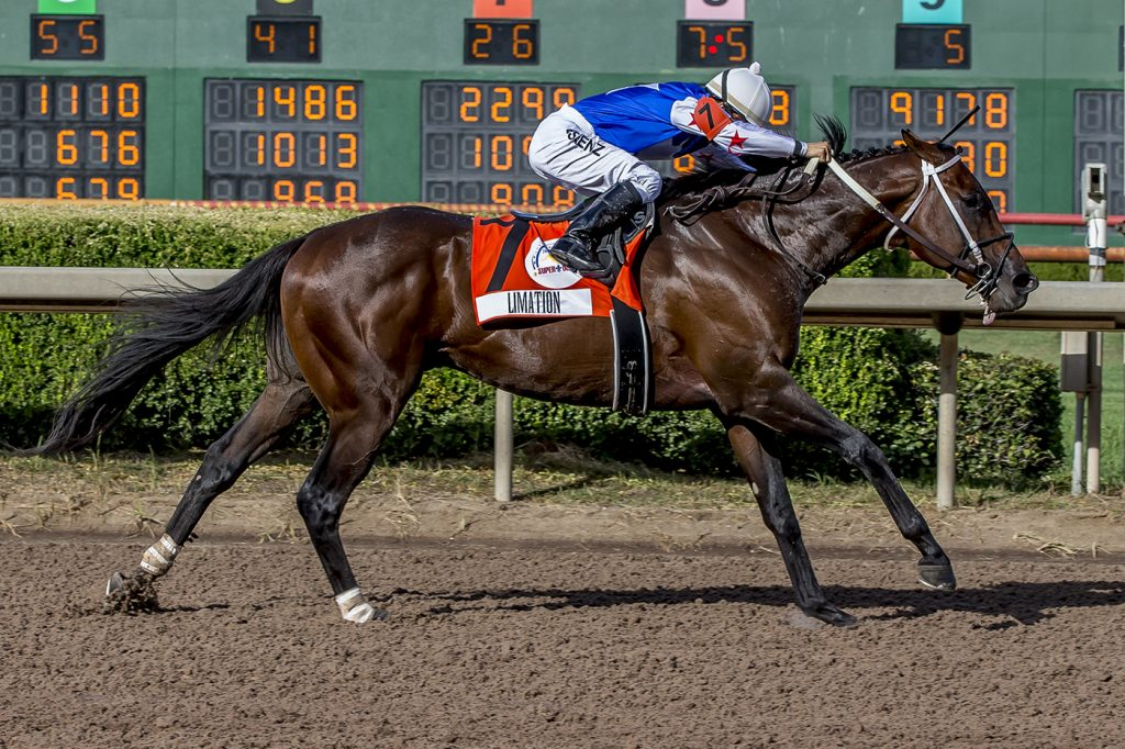 Limation. Super Derby-G3. Hodges Photography - F_Web